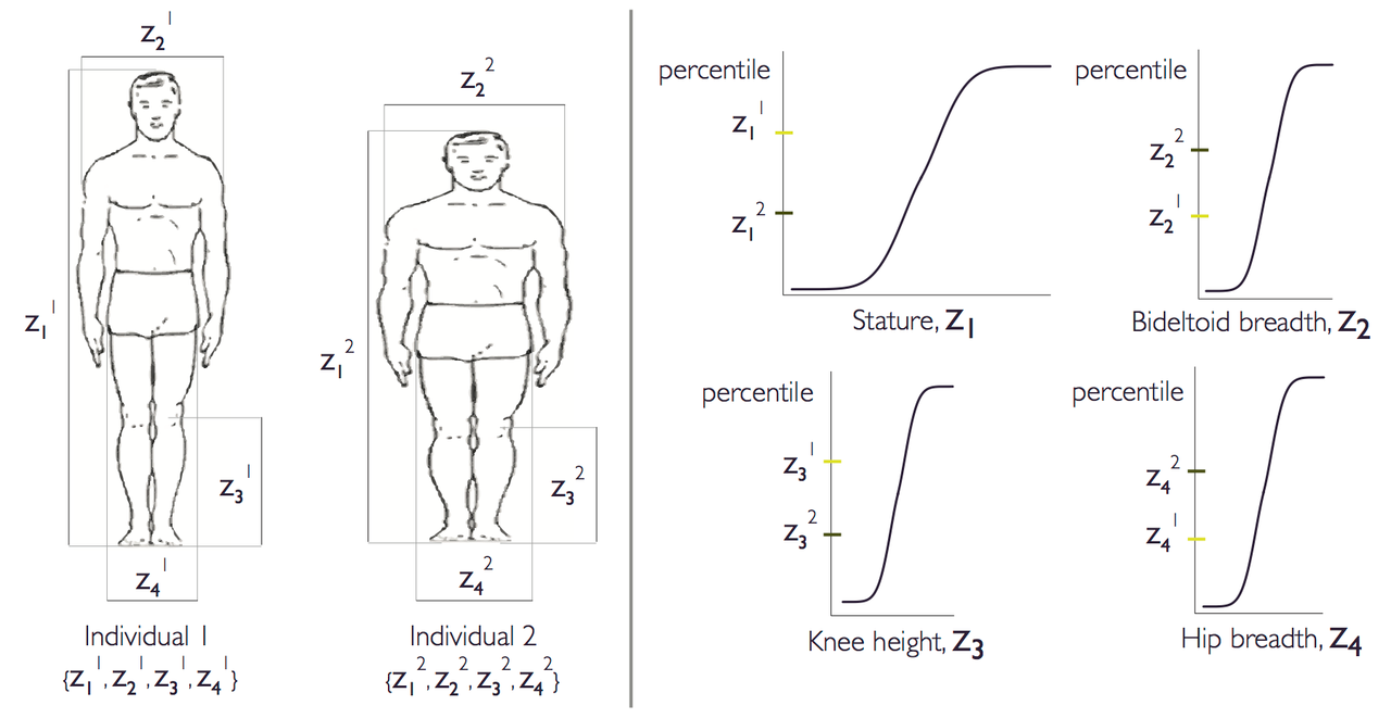 A z-score-based method to synthesize anthropometric datasets for global user populations